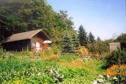 Garten mit Häuschen zu verkaufen