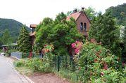 FeWo Villa Steiner von 1896 Pfalz,Trifelsland,