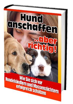 cover-hundanschaffen-2.jpg