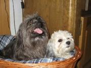 Heidi und Yulian 17_07_06 2.jpg
