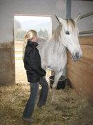 Tierheilpraxis und Pferdeostepahtie