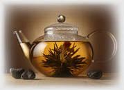 NEU: Kostenloser Online-Tee-Shop
