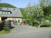 Fahrradklein.jpg - Weinhof an der Mosel