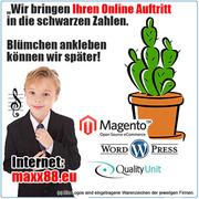 Ecommerce mit Magento Shopsoftware