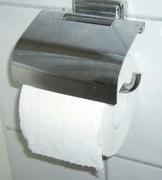 P1000319.JPG - Das DUSCH WC-SYSTEM für ein sauberes Frischegefühl