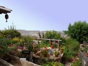 Ferienhaus auf Teneriffa - Landhaus La Tajona