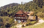 Freienhof2.jpg - Urlaub auf dem Freienhof in St. Peter Schwarzwald
