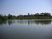 Fisch bzw. Badesee in Ungarn