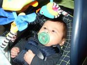 baby.jpg - 10 Monate altes Baby Boy für die Annahme