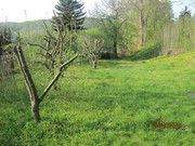 Property to build in Germany Seebach near Eisenach
