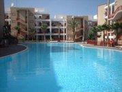Ferienwohnung auf Teneriffa - Los Balandros 1